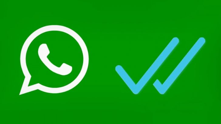 whatsapp-blue-ticks-main