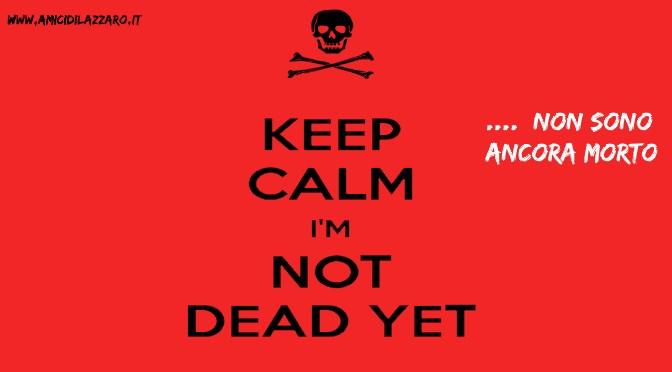 """""""Not Dead Yet"""", i disabili americani che lottano contro l'eutanasia"""