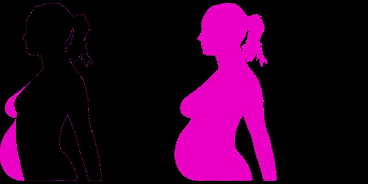 Il fenomeno della maternita' surrogata