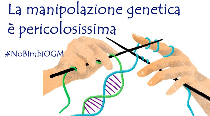 Dna di tre genitori si moltiplicano i dubbi scientifici