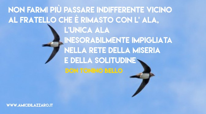 Compagni di volo (Don Tonino Bello)