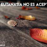 45. Si la eutanasia no es aceptable ¿qué solución hay para aliviar los sufrimientos de los enfermos incurables?