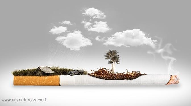 Curare il tabagismo: Il fumo come danno.