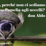 Aldo Trento: alla fattoria San Padre Pio, tra piante fiori e l'omelia degli uccellini.