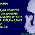 Paolo VI, un santo per la pace e la vita